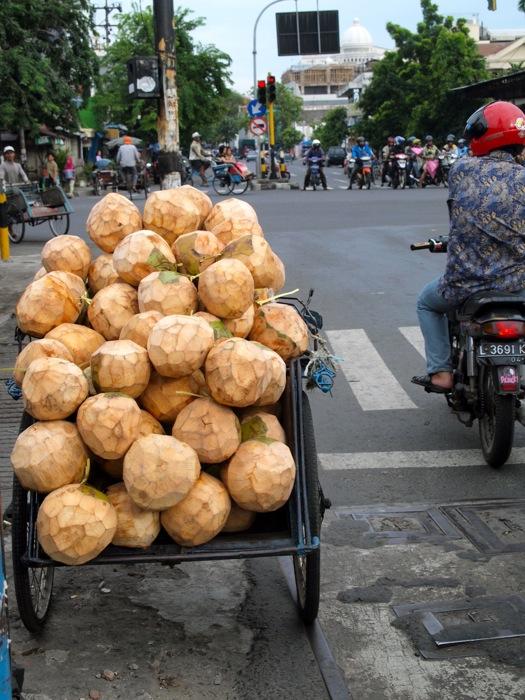 Coconuts in Surabaya