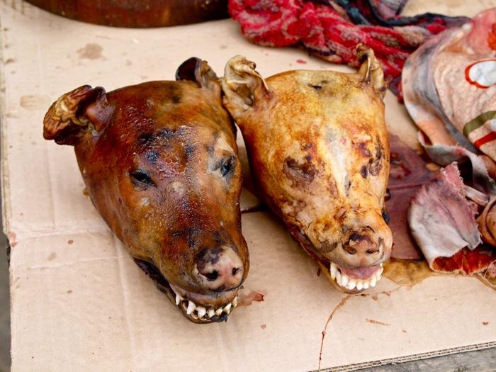 Hot Dog Dog Meat